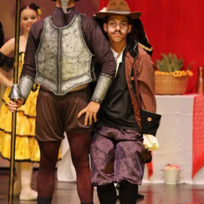Don Quixote 2015